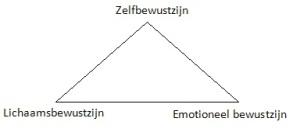 Psycho- fysieke driehoek : Lichaam bewustzijn – Emotioneel bewustzijn leid tot zelf bewustzijn.