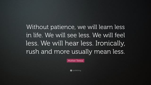 17134-Mother-Teresa-Quote-Without-patience-we-will-learn-less-in-life-We.jpg